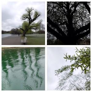 Regents Park in April