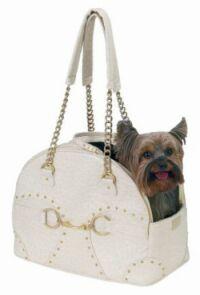 handbag-dog