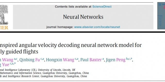 Huatian Wang publishes paper in Neural Networks