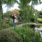 The beautiful Japanese garden