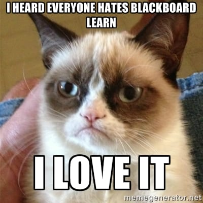 even cats prefer Blackboard