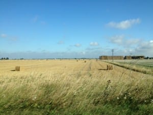 fields between Lincoln and Holbeach