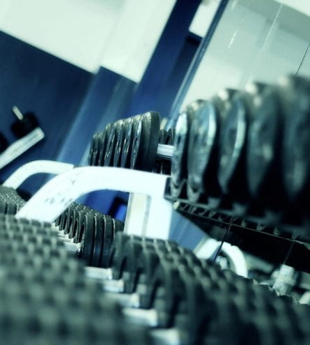 Row of weights in a gym