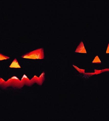 halloween pumpkins in the dark, lit up