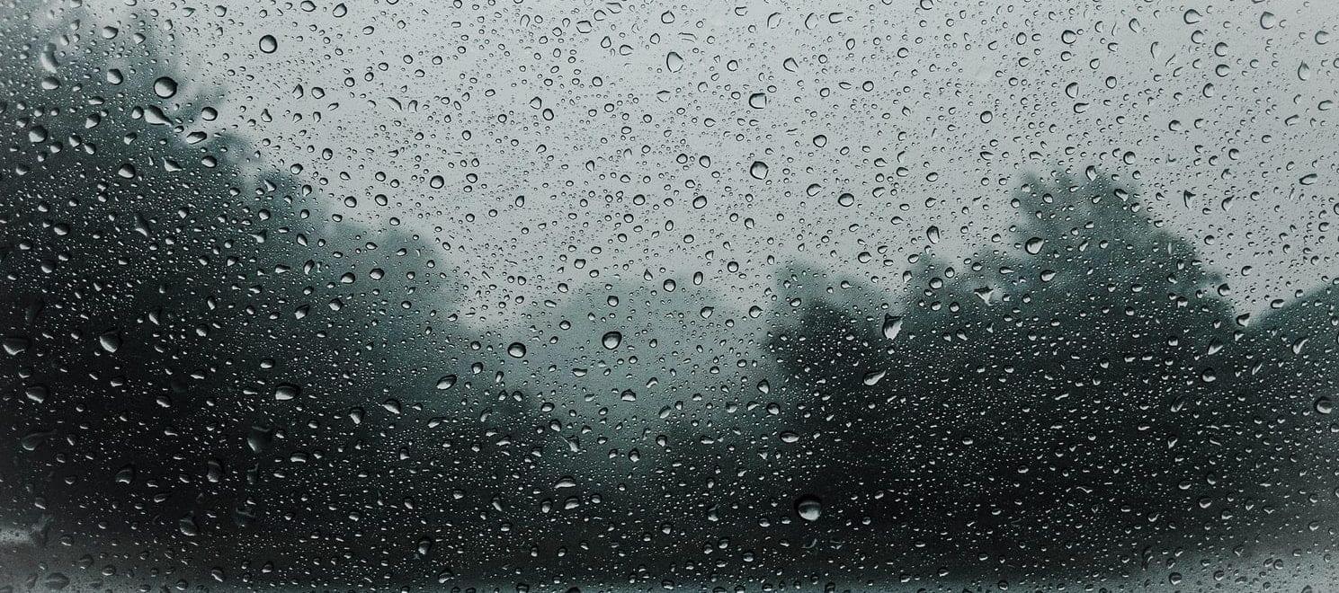 Raindrops on a window blurring trees behind