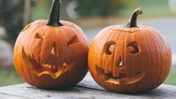 Two carved pumpkins on a bench