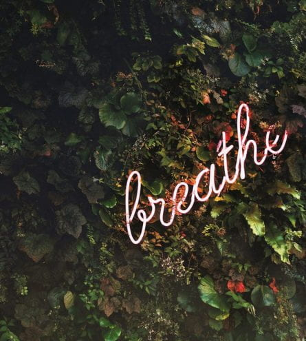 Neon pink sign saying 'breathe' on a wall of leaves