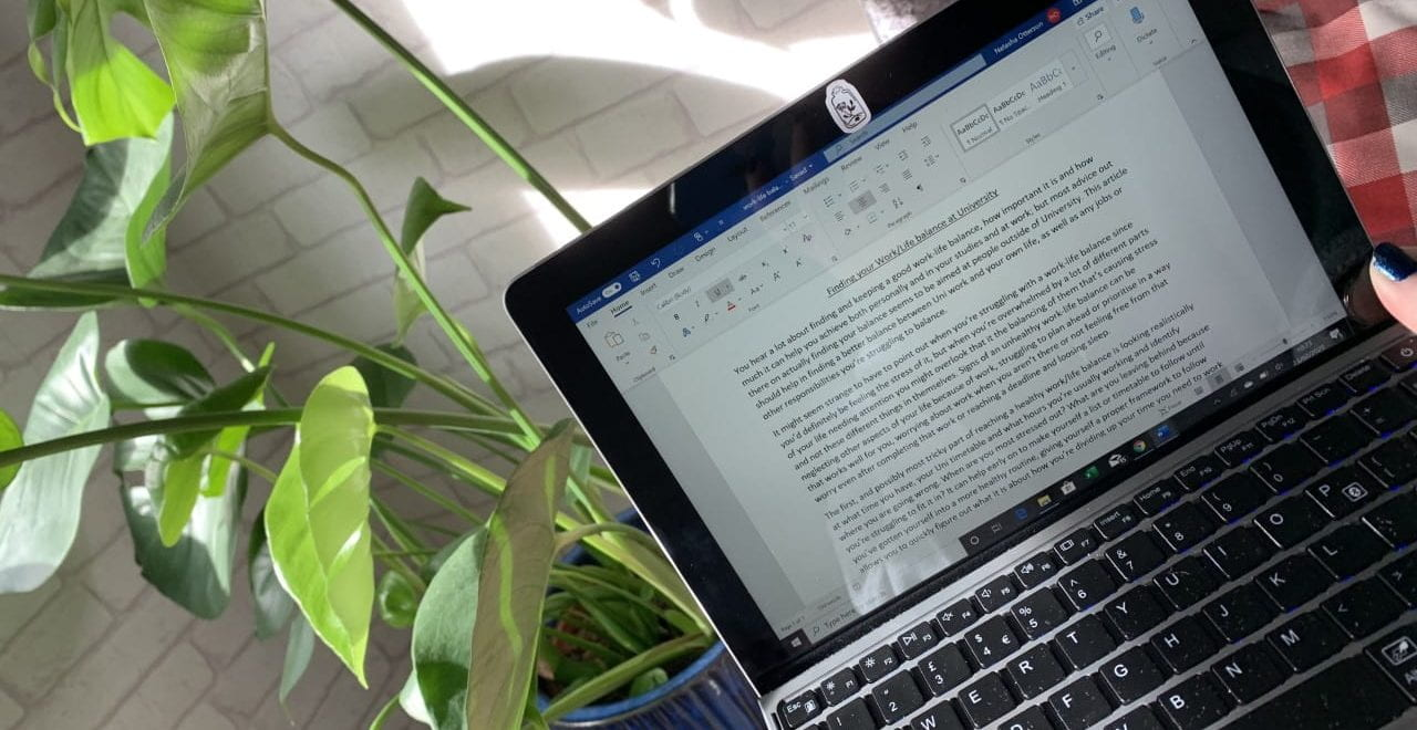 doing work on a laptop in front of a plant
