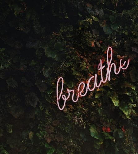 neon sign saying 'breathe'
