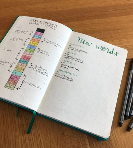 A bullet journal, open on the page that details the daily routine. Some coloured pens next to the journal.