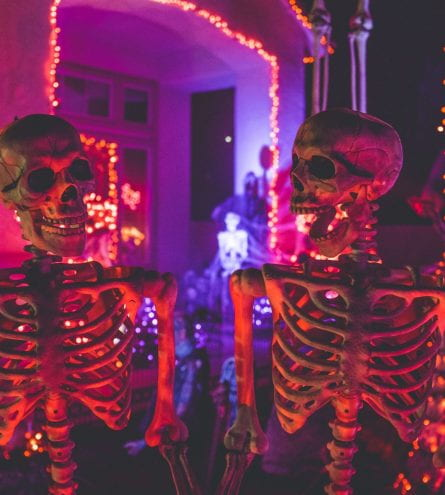 Two fake skeletons sat in front of purple neon lights