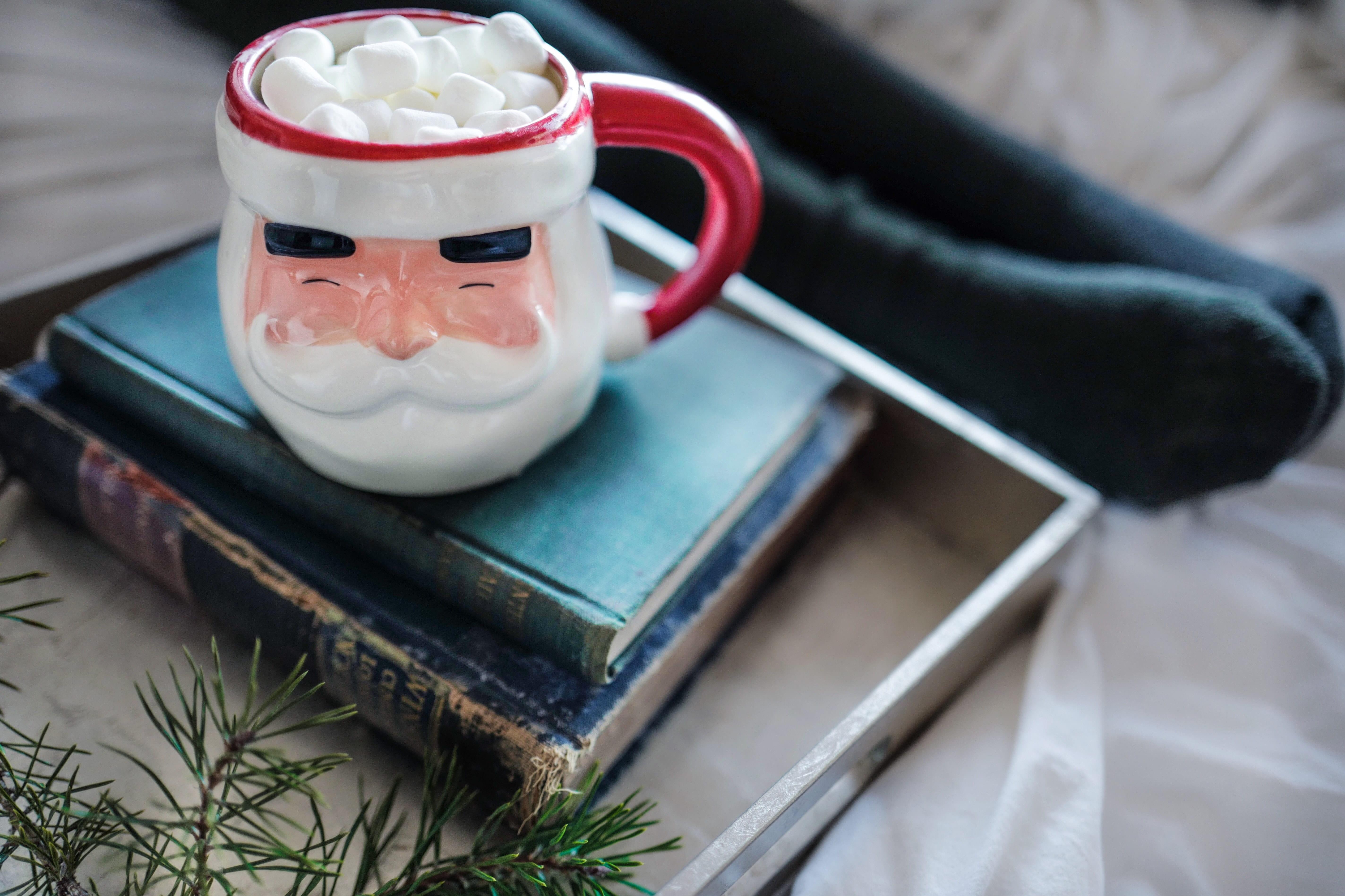Santa shaped mug sat on stack of books