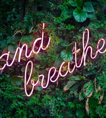 A neon light sign saying 'and breathe' surrounded by fake plants