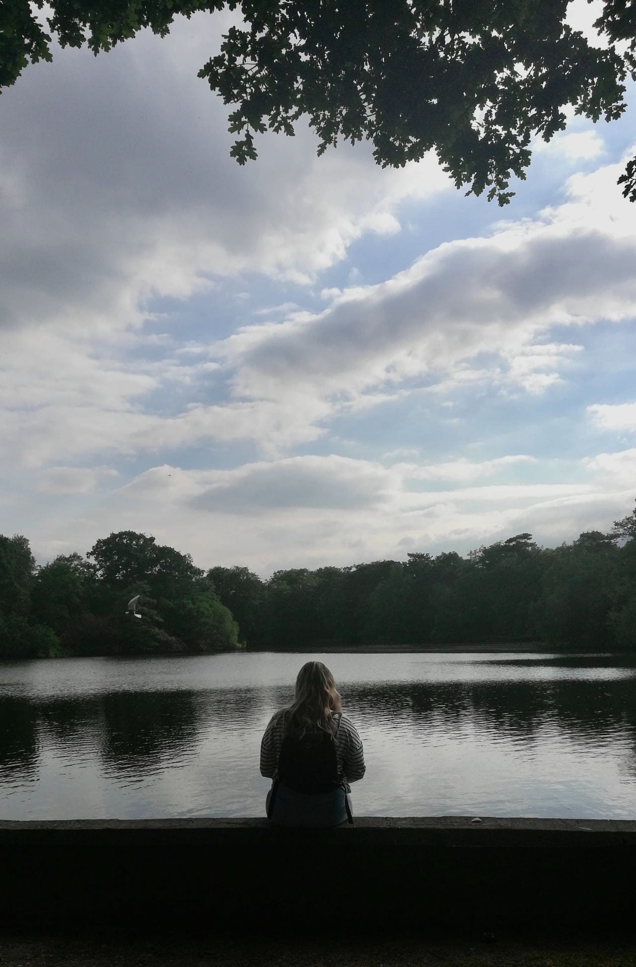Picture of a girl sat with her back to the camera looking out to Hartsholme Lake