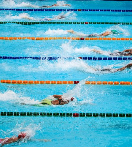 Swimmers taking part in a swimming competition