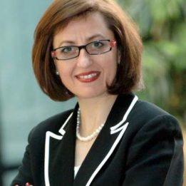 Professor Elena Antonacopoulou