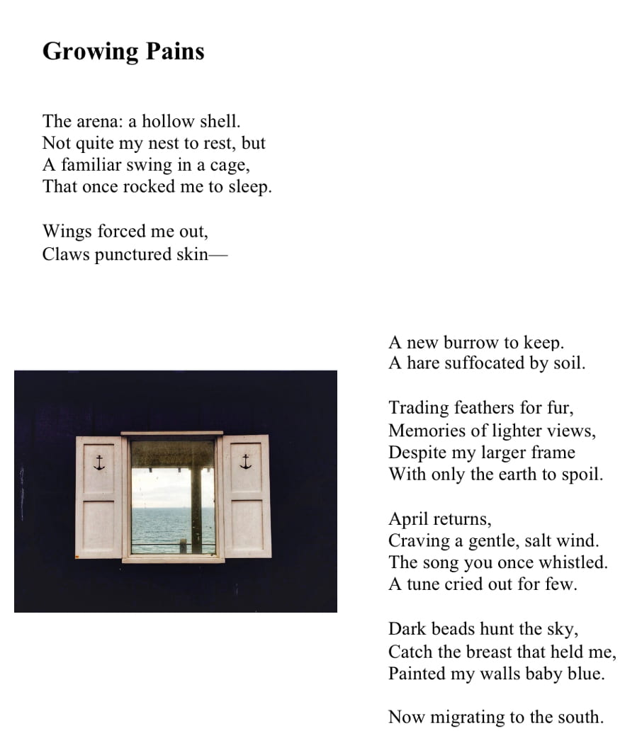 Poem titled Growing pains accompanied by a picture of an open window looking out to sea.