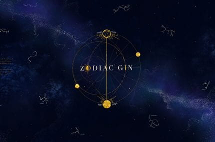 page thumbnail previewing Zodiac Gin Packaging Design
