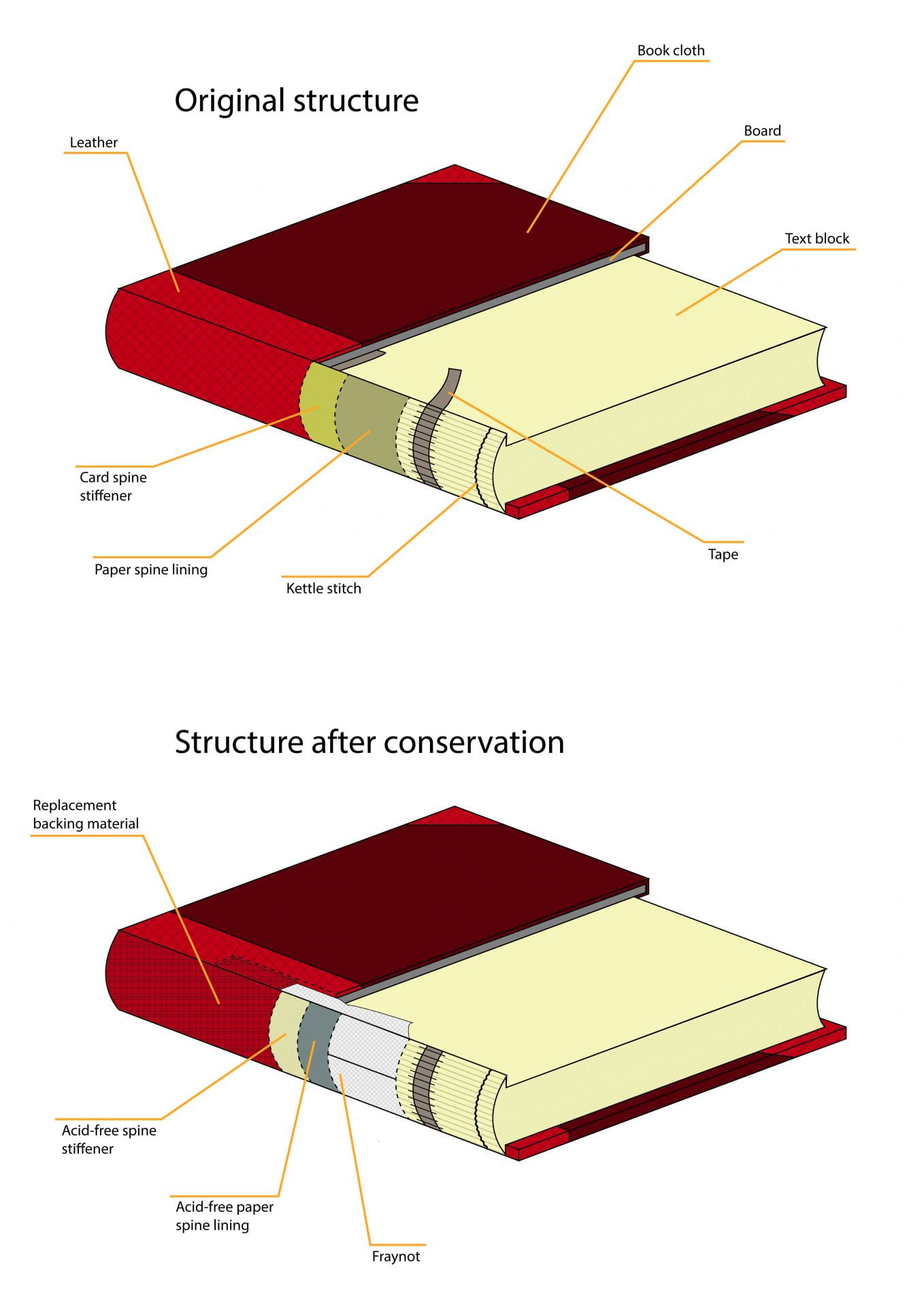 Diagrams of a 19th century book, showing the structure of the binding before and after conservation treatment.