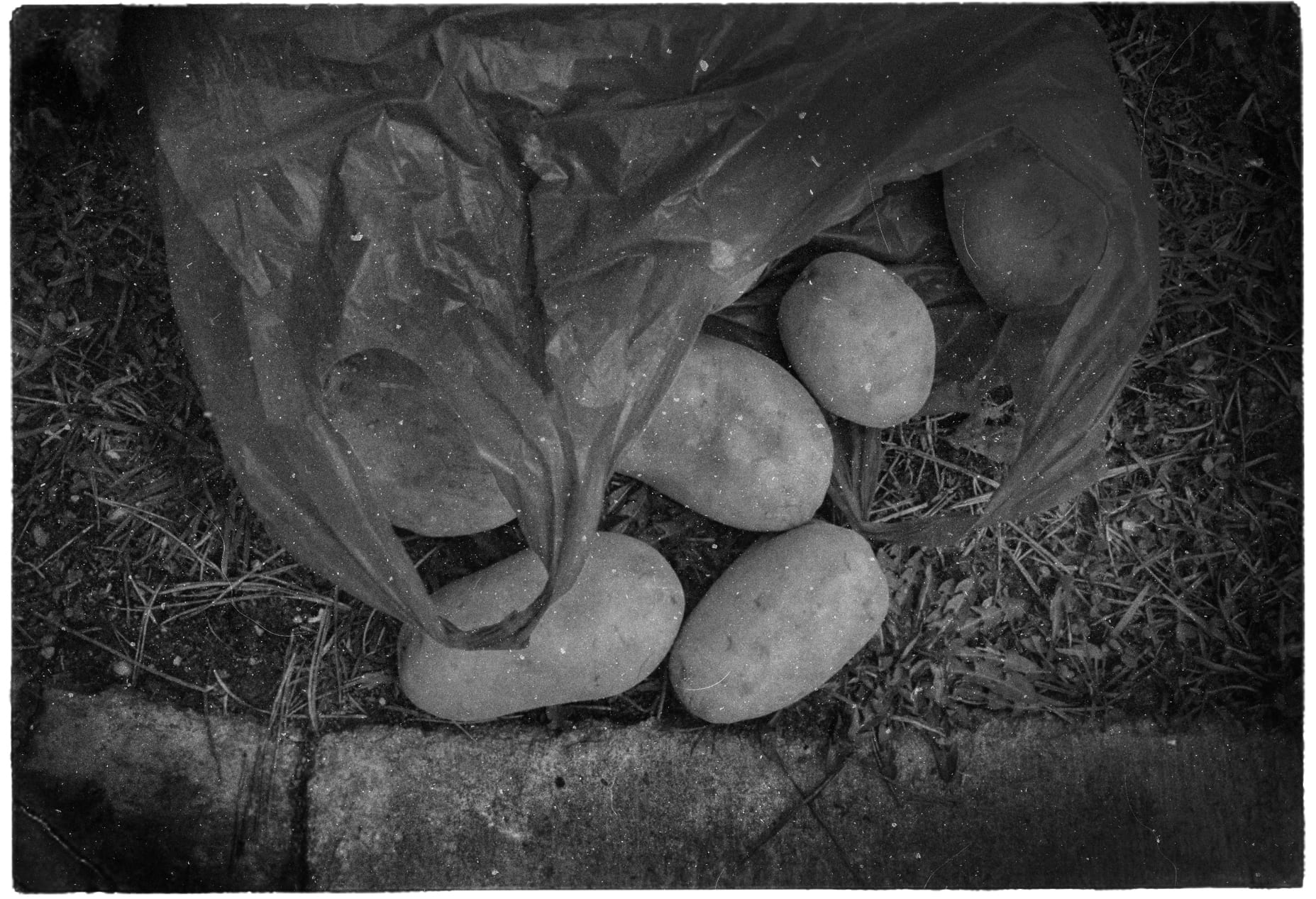 Close up black and white photograph of a spilt bag of potatoes.