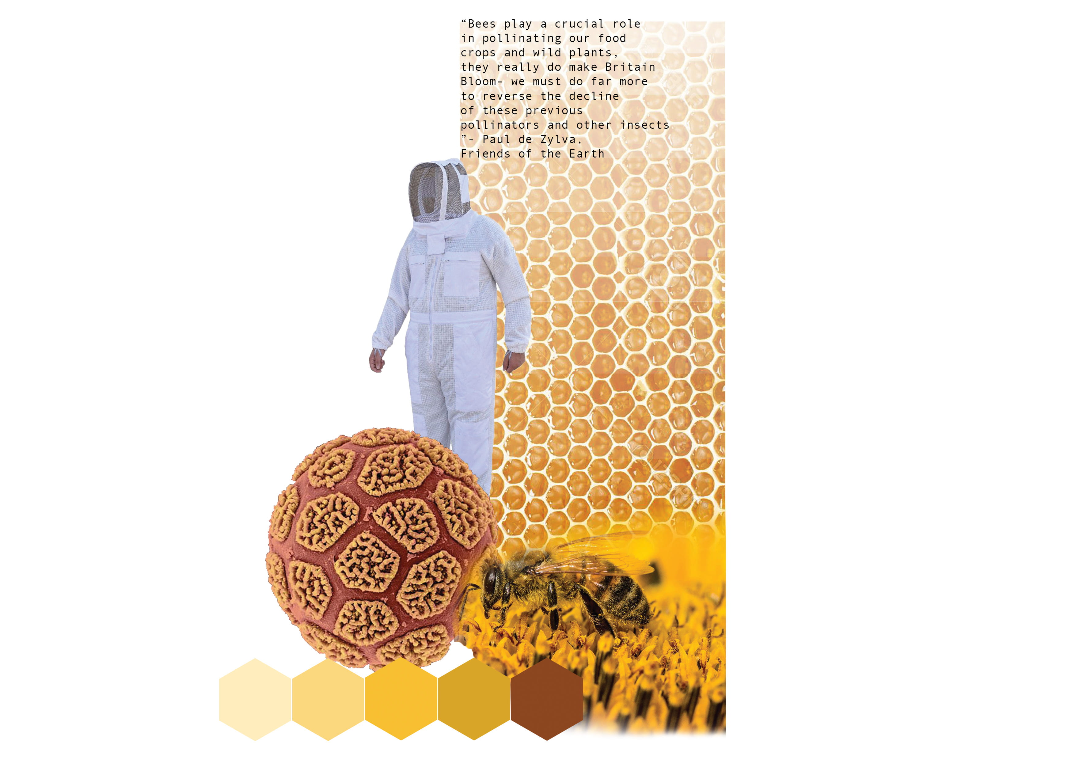 A mood board showing a person in a bee-keeping suit and different shades of yellow.