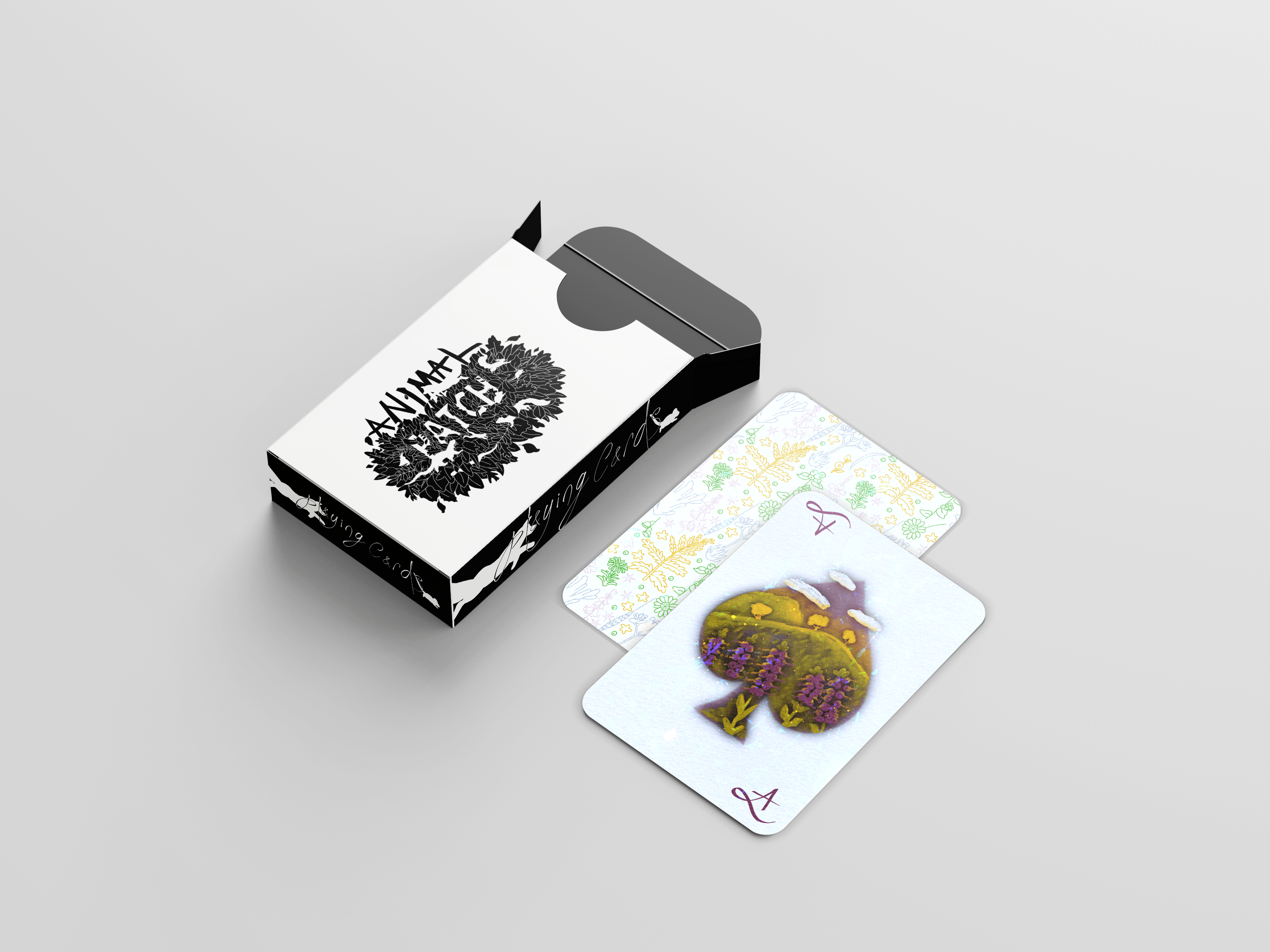 Illustrated Playing Cards and Packaging design.