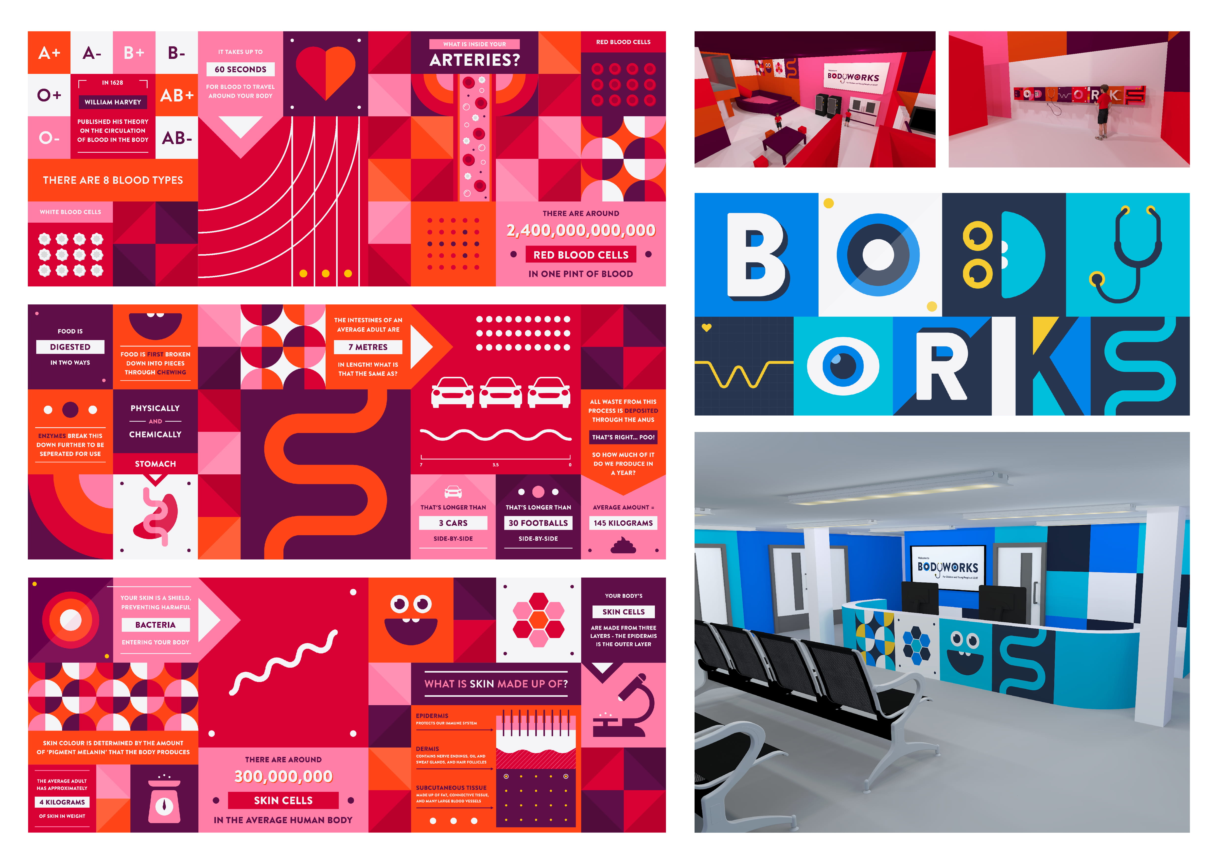 Bodyworks: For Children And Young People at ULHT - Modular Graphics - Year Two FMP.