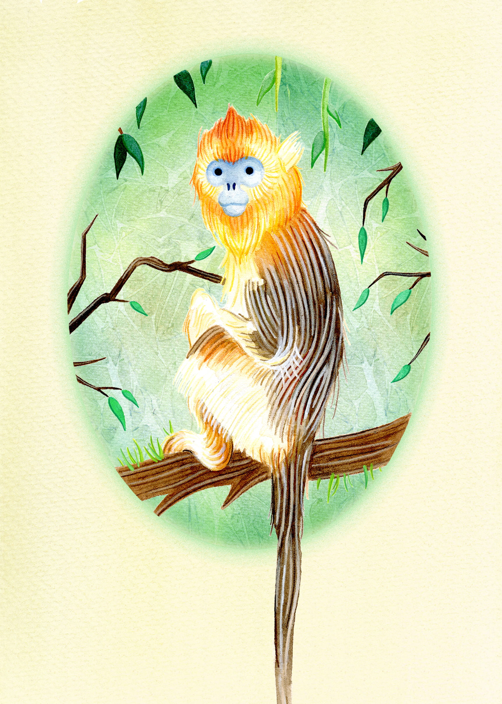 Painting of a Golden Snub Nosed Monkey, sitting on a tree branch.