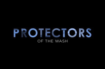 page thumbnail previewing Protectors of the Wash