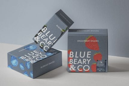 page thumbnail previewing Dragon Rouge Eco-Packaging brief