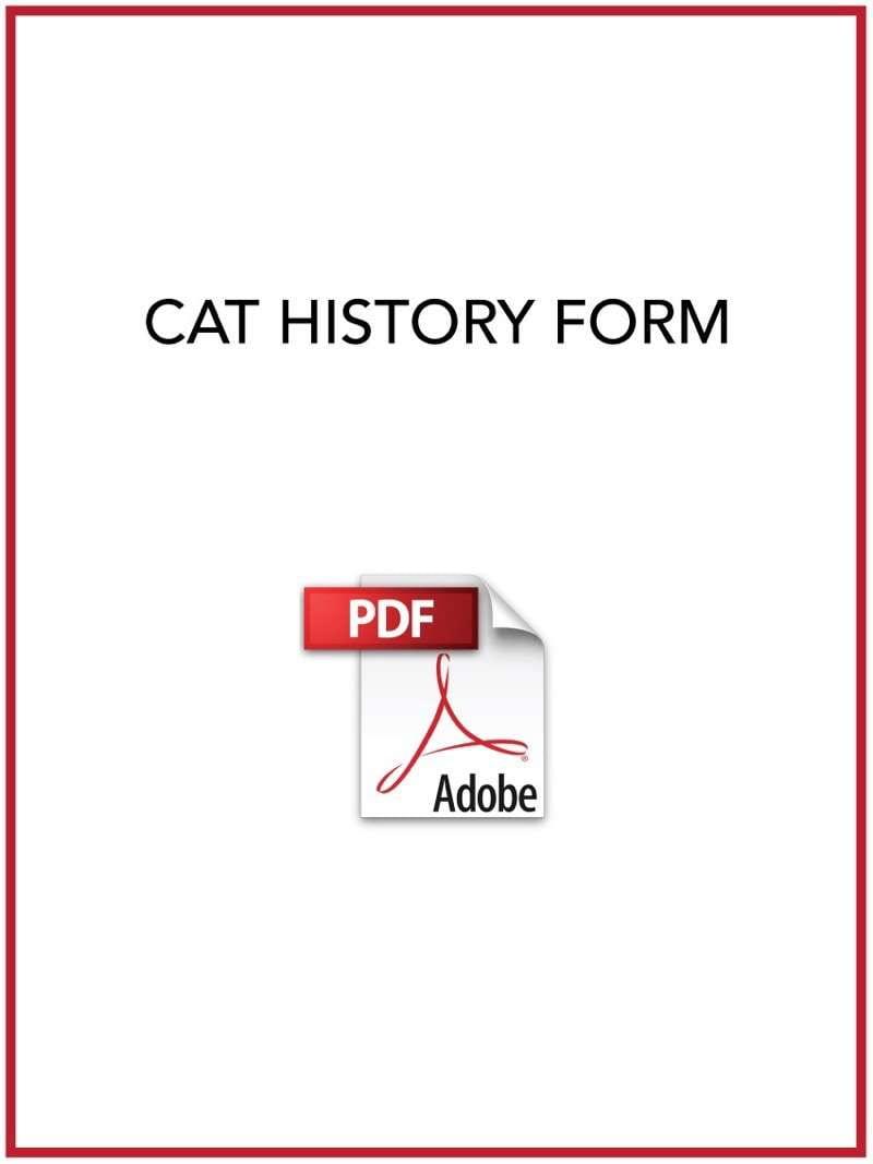 feline history form