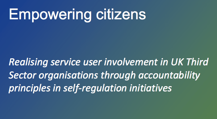 Empowering citizens – Realisation of User Participation in SRIs