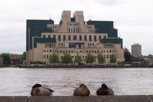 MI6 ducks