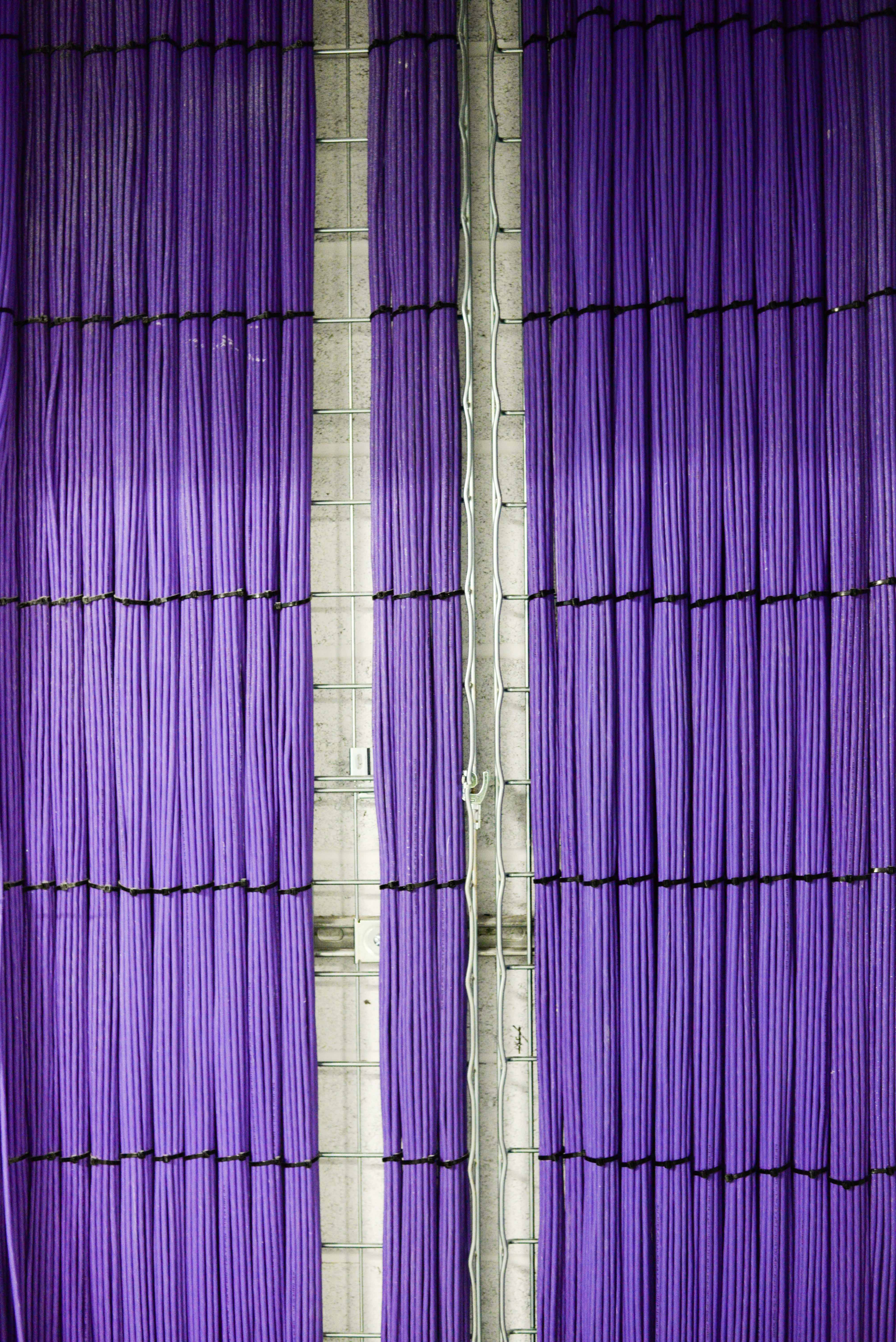 Image of purple pipes on a wall