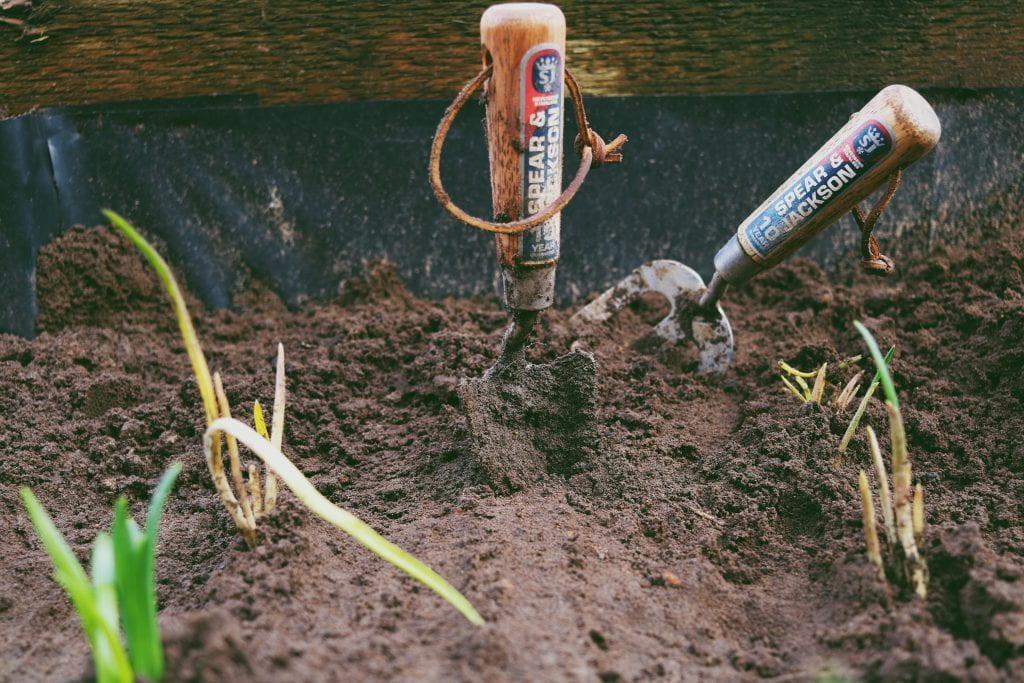 Image of gardening tools in soil