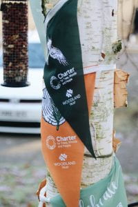 Image of colourful green and orange bunting wrapped around the trunk of a tree