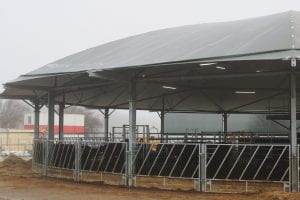 Image of a round animal shed with cows inside