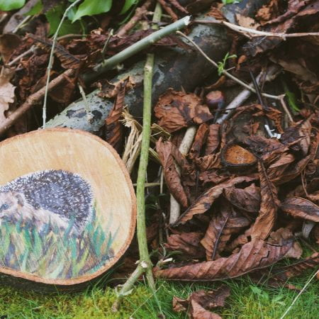 Image of a pile of logs, sticks, leaves and a painted hedgehog on a wooden slice