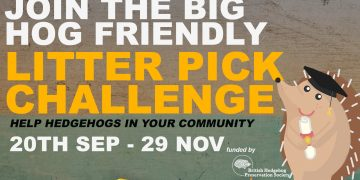 Image of an illustrated hedgehog, words read: Join the big hog friendly litter pick challenge. Help hedgehogs in your community. 20th Sept - 29th Nov