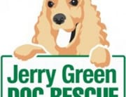 79055_jerry-green-dog-rescue