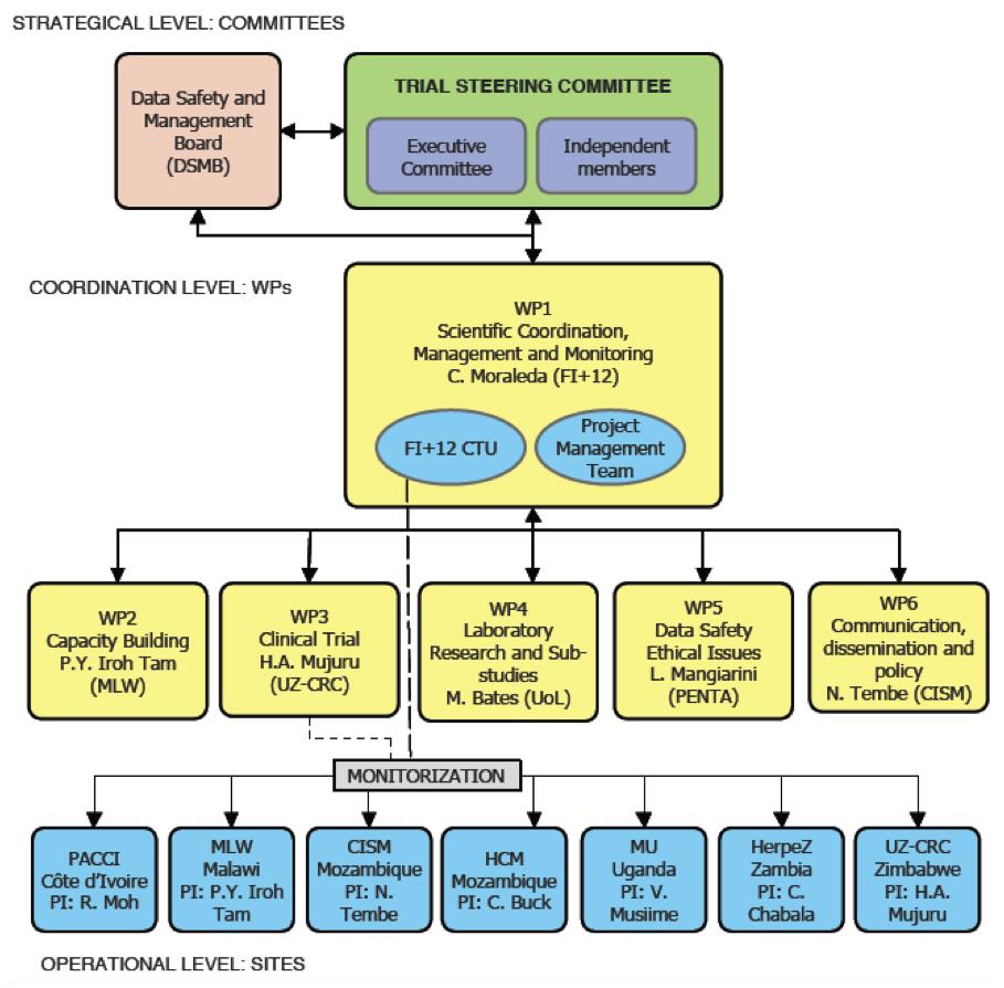 Empirical Organogram