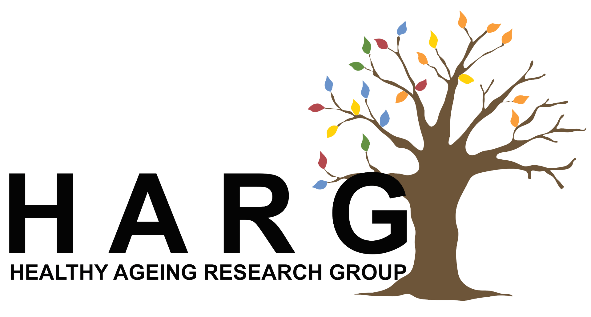 Healthy Ageing Research Group, HARG, University of Lincoln, College of Social Science ,School of Health and Social Care