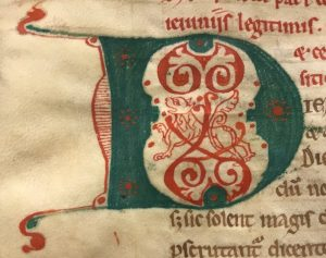 medieval illuminated letter D, with a red lion in the centre of a green letter
