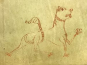 a medieval drawing of a lion