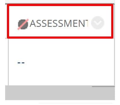 A screenshot of a hidden Assessment in the Grade Centre Column.