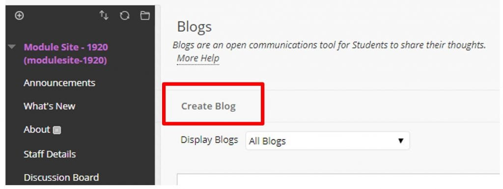 A screenshot of a Blackboard Module Site, the Blogs page is shown, a red box highlights the Create Blog button.