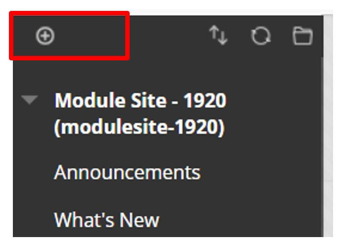 A screenshot of the Blackboard Module Site Navigation Menu. The top of the menu is shown, it contains the site name and ID, and a plus icon in the top left.