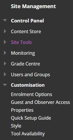A screenshot showing the 'Site Management' menu in the left hand navigation of Blackboard.