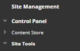 A screenshot showing the Site Management menu in the left hand navigation on a module site.
