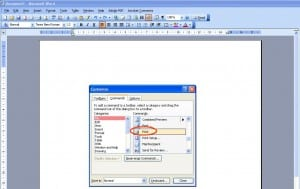Choose File then Print